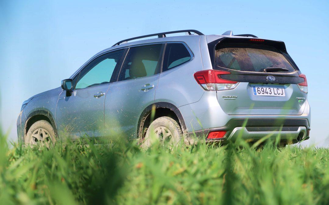Subaru Forester EcoHybrid 2020: el primer híbrido de Subaru
